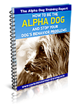 The Secret Alpha Dog Training Report